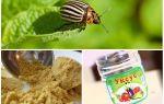Борьба с колорадским жуком народными средствами