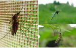 Чем самостоятельно обработать участок от клещей и комаров