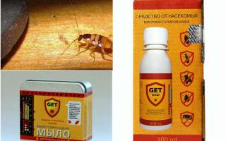 Средство get от тараканов: отзывы и инструкция по применению
