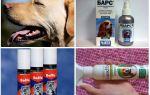 Средства от комаров для собак — обзор и описание