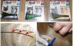 Рольф клуб 3д капли для кошек и собак: инструкция по применению и отзывы