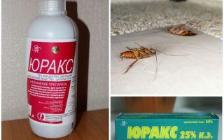 Юракс от тараканов — отзывы и инструкция по применению