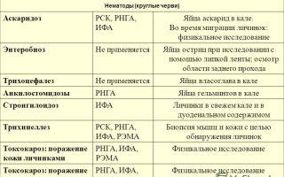 Анализ крови на глистов у детей – название, описание, стоимость