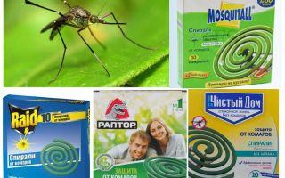 Обзор спиралей от комаров – отзывы, описание и правила использования
