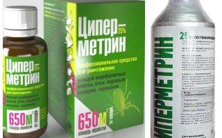 Циперметрин от клопов – отзывы, цена и инструкция по применению
