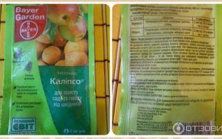 Калипсо от колорадского жука – отзывы и инструкция по применению, цена