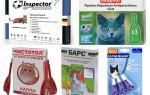 Капли от блох и глистов для кошек — обзор средств