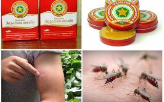 Бальзам звездочка от комаров и их укусов – отзывы и описание
