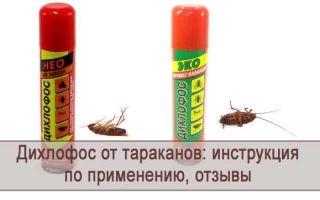 Дихлофос от тараканов, инструкция по применению