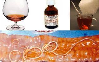 Касторка с коньяком от глистов – отзывы о средстве, рецепт, как принимать