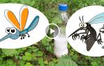 Средства от комаров и мошек своими руками