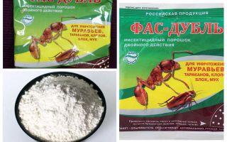 Порошки от тараканов – отзывы и обзор