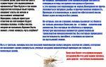 Новый би 58 от колорадского жука – дозировка и инструкция по применению, отзывы, цена