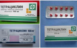 Антибиотики при укусе клеща для взрослых