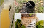Березовый деготь от комаров — как применять, отзывы и рецепты