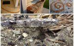 Корица от муравьев на садовом участке и в квартире