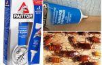 Средства раптор от тараканов и отзывы о них: гель, ловушка, спрей