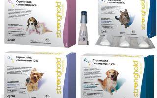 Капли стронгхолд для кошек и собак – инструкция и отзывы