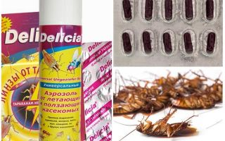 Delicia от тараканов — отзывы и инструкция по применению