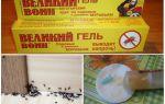 Гель великий воин от муравьев — отзывы и инструкция по применению