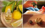 Эфирные масла от клещей для людей