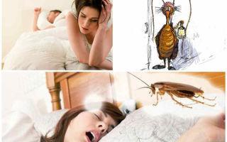 Давить тараканов во сне по соннику