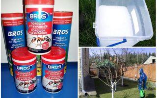 Порошок bros от муравьев — отзывы и инструкция по применению