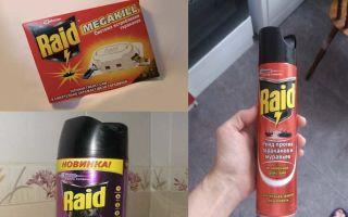 Рейд от тараканов: отзывы и инструкция по применению