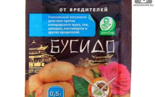 Бусидо от колорадского жука: инструкция по применению и эффективность