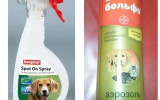 Спреи для собак от блох: обзор эффективных средств и отзывы