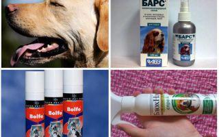 Средства от комаров для собак – обзор и описание