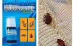 Заговор от тараканов – как избавиться навсегда