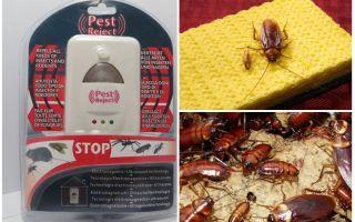 Отзывы о средстве от тараканов pest reject