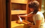 Как бороться с блохами в квартире — эффективные методы борьбы