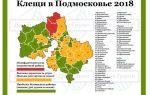 Клещи в подмосковье и москве в 2018 году – опасные районы на карте