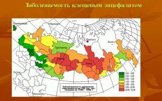 Где обитают энцефалитные клещи в россии