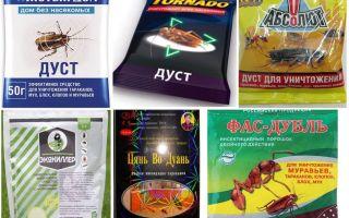 Дуст от тараканов – отзывы и обзор