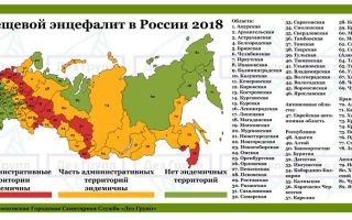 Клещи в ленинградской области в 2018 году