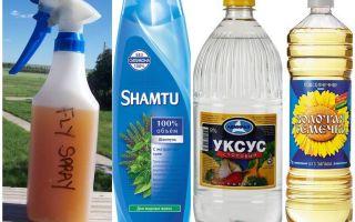 Средство от комаров в домашних условиях с уксусом и шампунем