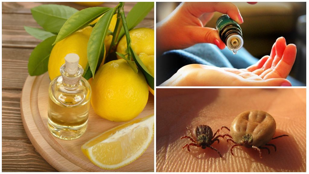 Эфирные масла против клещей