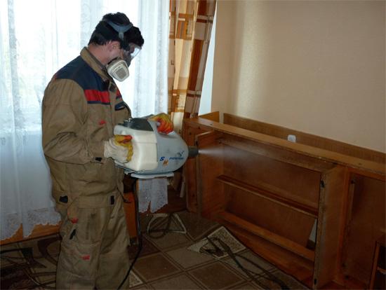 Как обработать квартиру от вшей и гнид