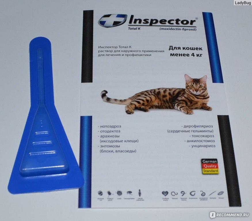 Как действуют капли инспектор для кошек
